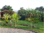 Foto Farm - For Sale - Extrema, MG