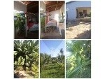 Foto Farm - For Sale - Crato, Ceará