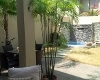 Foto Casa en alquiler en Samborondon