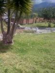 Foto Hermosa quinta 5700 mts en amaguaña