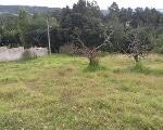 Foto Bonito terreno familiar de venta. Amaguaña