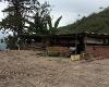 Foto Se Vende Finca de 22 Hectarias en Javin, La...