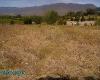 Foto Se vende en Catamayo terreno con riego de...
