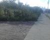 Foto Lotes de terreno en catamayo loja $82 por metro