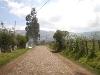 Foto PINTAG, terreno agrícola plano de 11.320m2