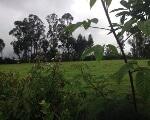 Foto Re/max futuro vende terreno vía amaguaña