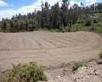 Foto Tababela, terreno de venta de 8.800 M2....