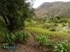 Foto Vendo en catamayo más de dos hectareas de...