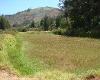 Foto 12 hectareas floricola en guayllabamba...