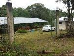 Foto Vendo finca de 4 hectareas y media en san...
