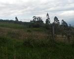 Foto Terreno de venta san patricio cumbaya