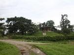 Foto Tena finca 13 hectareas con casa $ 450.000
