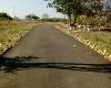 Foto Alquilo terreno 10 hectareas ideal para...