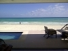Foto Homes for Rent/Lease in Playacar Phase 1,...