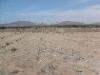 Foto Terreno De 1 A 4 Hectareas En Chao, Viru-la...