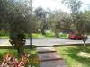 Foto Bonito Departamento De 207 M2 Y 2 Dormitorios,...
