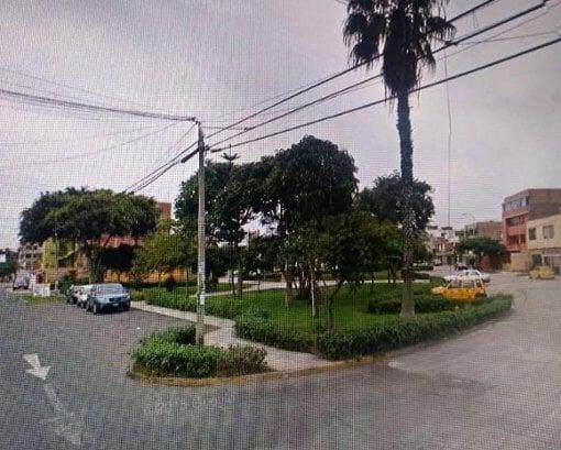 Foto Lima los cipreses