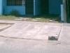 Foto Alquiler de Habitacion en LOS OLIVOS