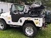 Foto Jeep Willys 6cc 1963 De Cidade C/ 25 Mil Em...