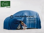 Foto Volkswagen gol 1.0 8V (G4) 2P 2005/2006...