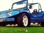 Foto Buggy cobra - 1993