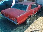 Foto Mustang Gta 1967 V8 302 Ford