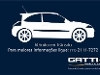 Foto Fiat Punto 1.8 Sporting 16v