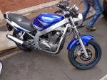 Foto Suzuki - gs 500 e - azul - 2004