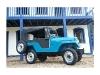 Foto Jeep Willys Nunca Fez Trilha Aceito Troca...