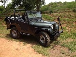 Foto Jeep Willys 6 Cc 4x4 Impecavel