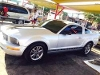 Foto Impecable FORD MUSTANG V6 Deportivo -05