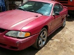 Foto Mustang ex