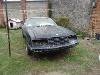 Foto Mustang 4 cil proyecto estandar