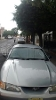 Foto Mustang gris impecable