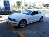 Foto Ford Mustang GT 2007