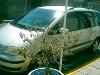 Foto Volkswagen Sharan 2003 160000