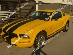 Foto Auto Ford MUSTANG 2005