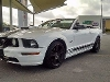 Foto Ford Mustang Convertible 2007