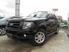Foto Ford Expedition 2008 121482