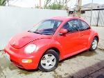 Foto Beetle reci n llegado 98