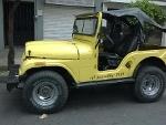 Foto Jeep willys cj5 4x4 4cil 60