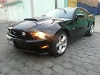 Foto Mustang 2012 Gt Vip Glass Roof Shelby Techo...