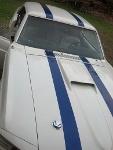 Foto Mustang clasico