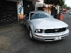 Foto Ford mustang v6 convertible piel impecable...