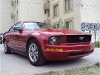Foto Ford mustang 2005 coupe v6 aut