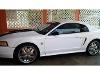 Foto Ford Mustang! 35 Aniversario