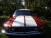 Foto 1967 Ford Mustang Hard Tpo en Venta