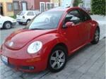 Foto Beetle GlS 07