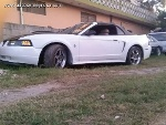 Foto Ford mustang 2000 - mustang gt mex convertible...