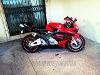 Foto Honda (Motos) Cbr 600 2005